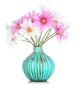Beautiful daisies in colorful vase isolated on white — Stock Photo