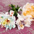 Stock Photo: White flowers colorized different paints, on color wooden background