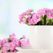 Many small pink cloves in cup on wooden table on window background — Stock Photo #26383473