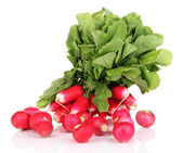Small garden radish with leaves isolated on white — Stock Photo
