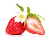 Fresas dulces y flores, aislado en blanco — Foto de Stock