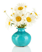 Beautiful bouquet chamomiles in vase isolated on white — Stock Photo