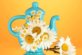 Beautiful bouquet chamomiles in teapot on color background — Stock Photo