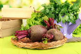 Young beets on wooden table close-up — Stock Photo