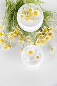 Cream with chamomile isolated on white — Stock Photo