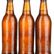 Beer bottles isolated on white — Foto Stock
