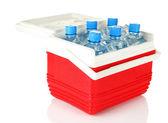 Cestování chladnička s lahví vody a kostky ledu, izolované na bílém — Stock fotografie