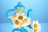Chamomiles krásnou kytici v konvici na barvu pozadí — Stock fotografie