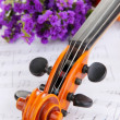 Classical violin  with flowers on notes — Stock Photo