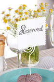 Table setting with chamomiles on checkered tablecloth close-up — Stock Photo