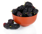Ripe mulberries in bowl isolated on white — Stock Photo