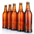 Beer bottles isolated on white — Stock Photo #26571035