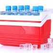 Traveling refrigerator with bottles of water and ice cubes, isolated on white — Stock Photo