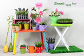 Beautiful colorful shelves with decorative elements standing in room — Stock Photo