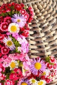 Wildflowers on wicker wooden background — Stock Photo