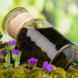 Bottle with basics oil on tree bark and stones close up — Stock Photo #26602741