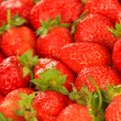 Fresh strawberry close up — Stock Photo #26604465