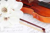 注意到关于古典小提琴 — 图库照片
