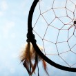 Beautiful dream catcher on blue background — Stock Photo #26684397