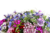 Krásnou kytici detail izolované na bílém — Stock fotografie