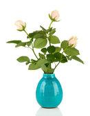 Beautiful roses in vase, isolated on white — Stock Photo