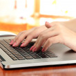 Female hands writing on laptop, on bright background — Stock Photo