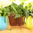 Fresh herbs in pitchers and basket on wooden table on natural background — Stock Photo #26797327