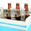 Traveling refrigerator with beer bottles and ice cubes isolated on white — 图库照片