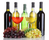 Assortment of wine in glasses and bottles isolated on white — Stock Photo
