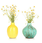 Small chamomiles in vase isolated on white — Stock Photo