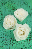 Sugar roses, on color background — Stock Photo