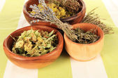 Medicinal Herbs in wooden bowls on striped tablecloth — Stock Photo