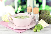 Cabbage soup in plate on napkin on wooden table on window background — Stock Photo