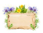 Starý papír s divokými květy izolované na bílém — Stock fotografie