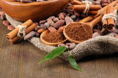 Cocoa powder and cocoa beans on wooden background — Stock Photo