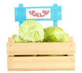 Green cabbage in wooden box, isolated on white — Stock Photo