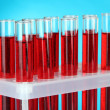 Test tubes with blood in laboratory on blue background — Stock Photo