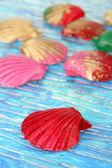 Färgglada seashell på ljus bakgrund — Stockfoto