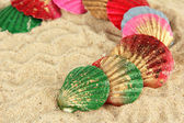 Coquillages colorés sur fond de sable — Photo