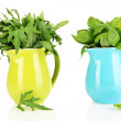 Fresh herbs in pitchers isolated on white — Stock Photo #27111573