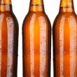 Beer bottles close up — Stock Photo