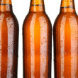 Beer bottles close up — Lizenzfreies Foto