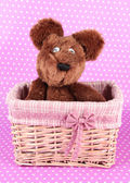 Beautiful basket with toy — Stock Photo