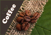 Coffee grains on sackcloth on green leafs close-up — Stock Photo