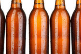 Beer bottles close up — Foto Stock