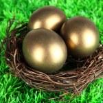 Three golden eggs in nest on grass — Stock Photo