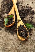 Tahta kaşıklar, çuval bezi zemin üzerine yeşil yaprakları ile çay makinası — Stok fotoğraf