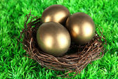 Three golden eggs in nest on grass — Stockfoto
