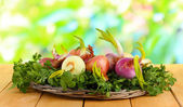 Sprouting onions on board with herbs on nature background — Stock Photo