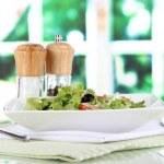 Light salad on plate on napkin on window background — Stock Photo #27240709